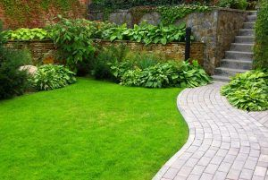 Gardening Services in South East London